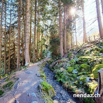Wycieczki w góry Nendaz – 4 Vallées